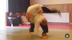 Stage de Cheng Hsin à l'Ecole de Cheng Hsin d'Isère